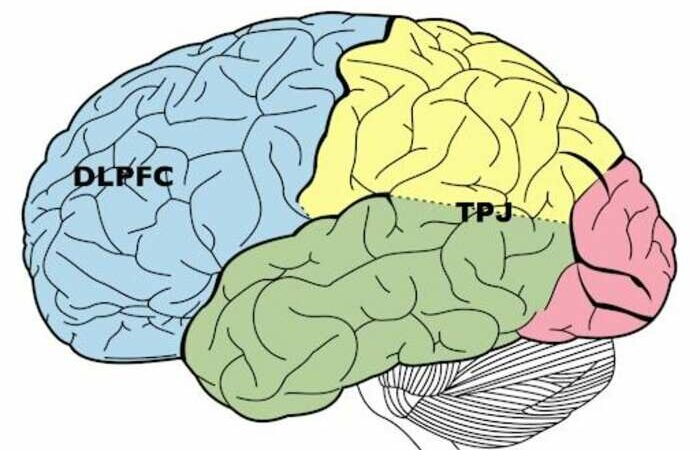 Readiness to punish others for selfish behavior explained by functional brain connections