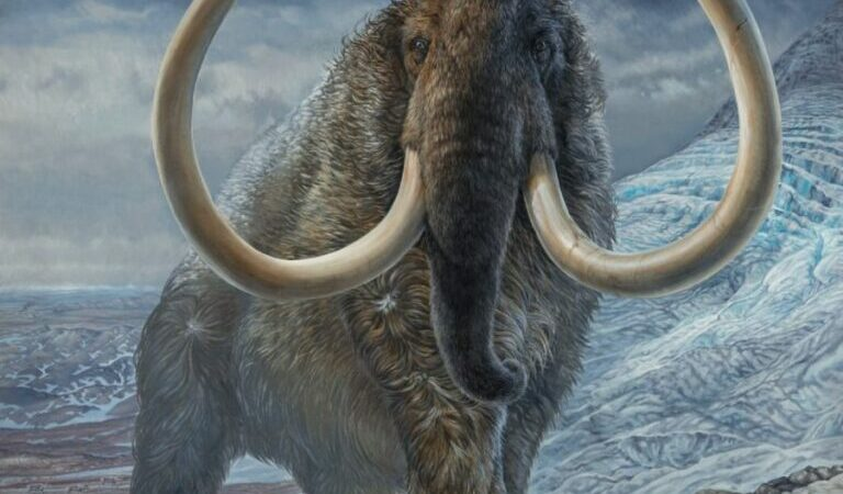 Astonishing Peek Into Travels of Mammoth 17,000 Years Ago: A Diary Written in Their Tusks